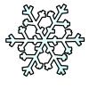 snowflake_sm
