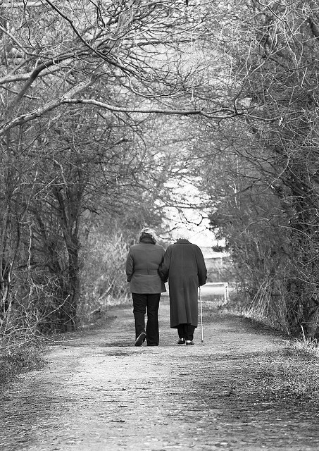 two-old-friends-out-for-a-stroll-by-smig44_uk