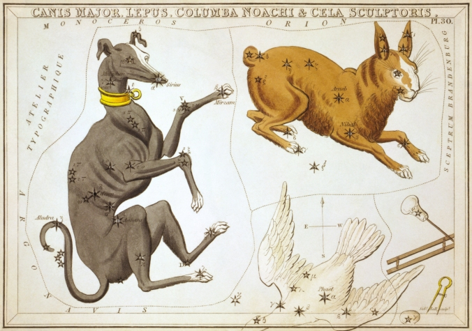 Sidney_Hall_-_Urania's_Mirror_-_Canis_Major,_Lepus,_Columba_Noachi_&_Cela_Sculptoris