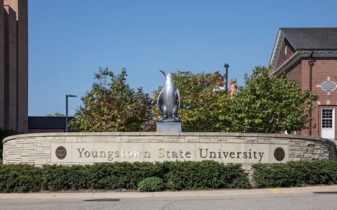 Youngstown State Penguin Statue